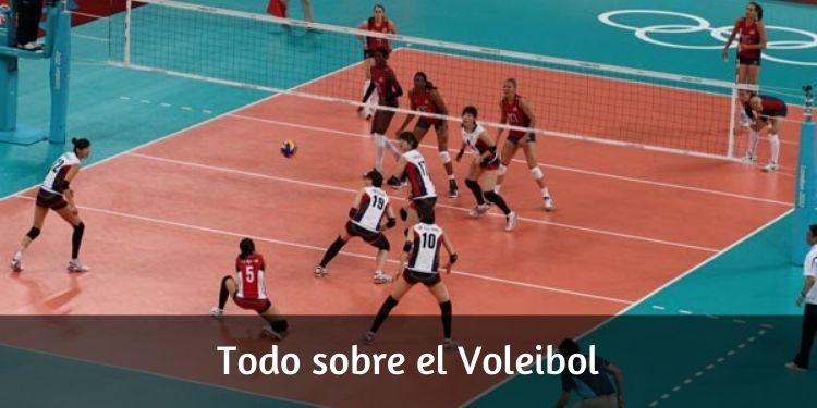Todo sobre el voleibol