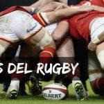 Conceptos y Reglas Básicas del Rugby
