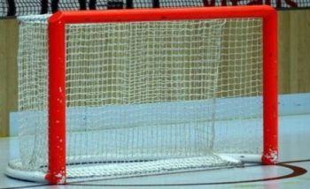 Portería y Zona de Protección del portero en Hockey Patines