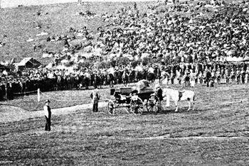Wenlock Olympian Games, precursores de los Juegos Olímpicos Modernos